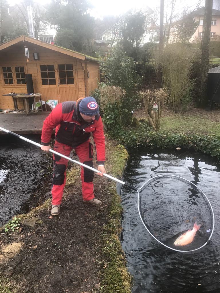 Vidange et nettoyage d\'un étang d\'un jardin - F&S jardinage