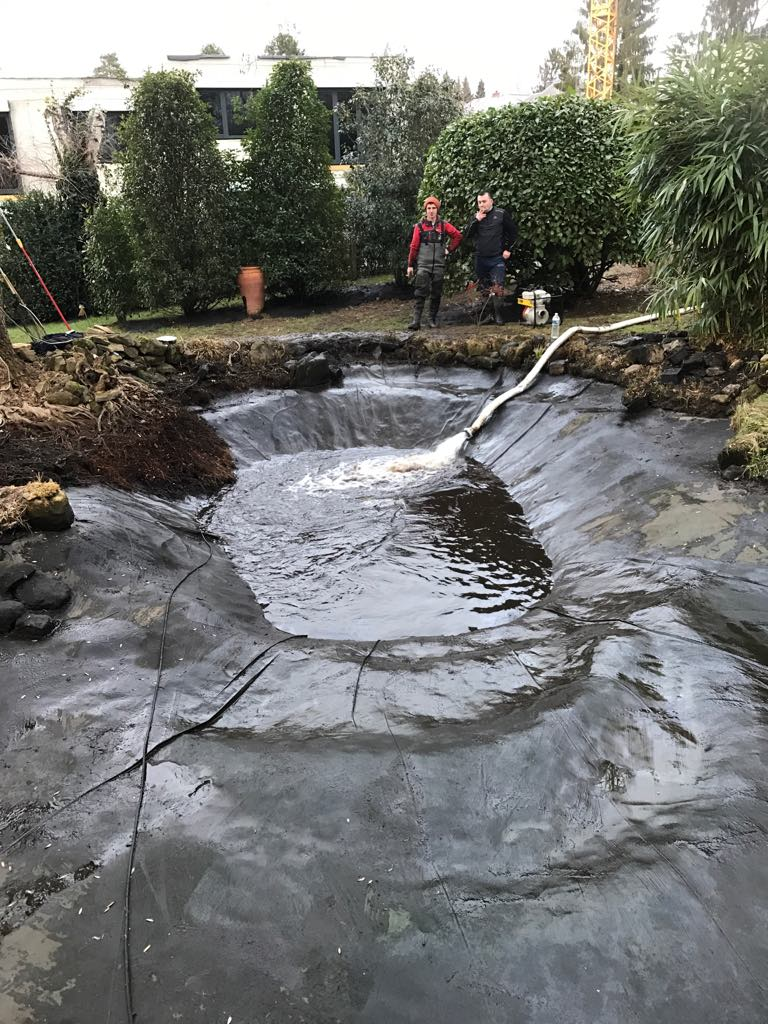 Un stream et du jardinage
